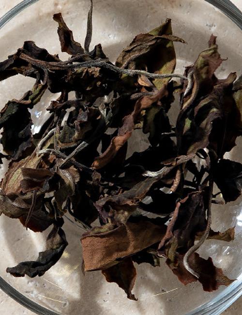 Malawi Bvumbe Peony White Tea